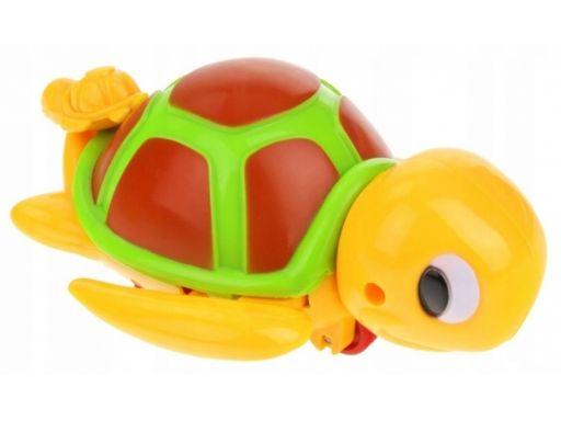 Zabawka do kąpieli pływający nakręcany żółw żółwik