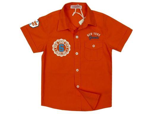 ~kako~nowa koszula grands 8 - 122/128 orange