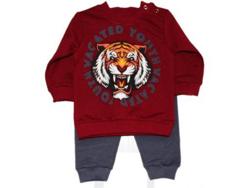 Baby city* śliczny komplet dres tygrys - 6 m