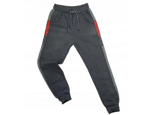 Ciepłe spodnie harison r 8 - 122/128 cm grey