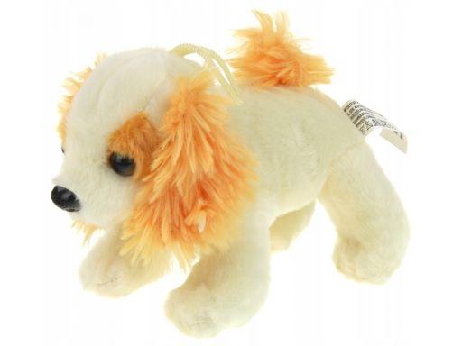 Maskotka pluszowa pluszak pies z dźwiękiem 8 cm